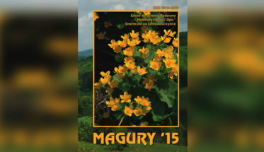 magury_15_2x1