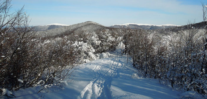 Зимовы курсы Бєщадском Лісовом Желізницьом