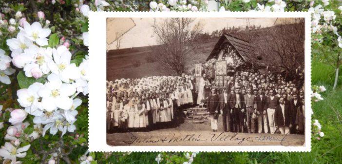 Липовец православный – 70 процент – субота, 20.00 год.