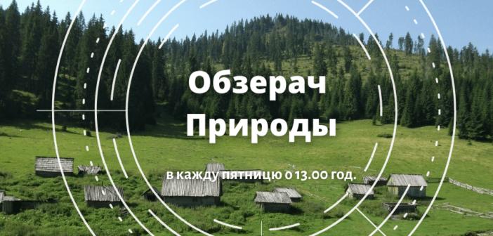 Обзерач Природы #12 – пятниця, 13.00 год.